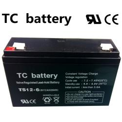 07.02.0080_BATTERY_TS12AH_6V