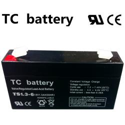 07.02.0083_BATTERY_TS1.3AH_6V